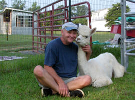 Getting an Alpaca Hug